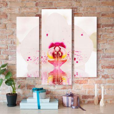 Stampa su tela 3 parti - Dotted Orchid On Water - Trittico da galleria