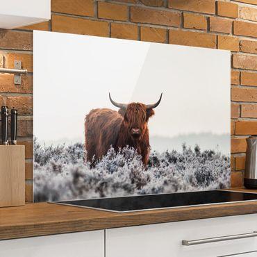 Paraschizzi in vetro - Bison In The Highlands