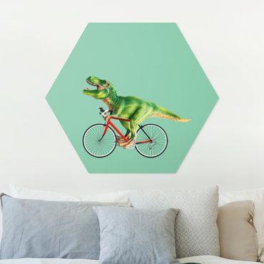 Esagono in forex - Dinosauro con la bicicletta