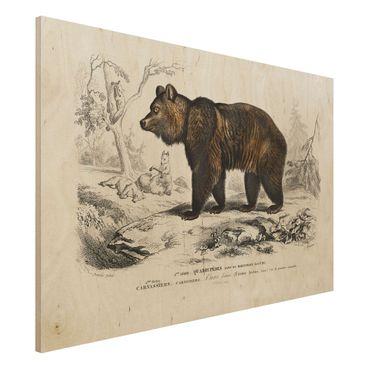 Stampa su legno - Consiglio Orso bruno Vintage - Orizzontale 2:3