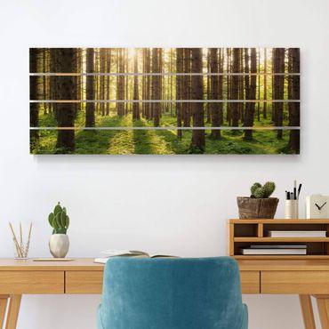 Stampa su legno - Raggi di Sun nel verde della foresta - Orizzontale 2:5