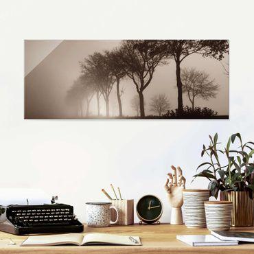 Quadro in vetro - Viale alberato nella nebbia mattutina