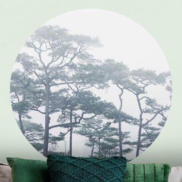 Carta da parati rotonda autoadesiva - Treetops in nebbia