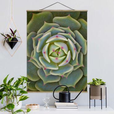 Foto su tessuto da parete con bastone - Pianta Grassa - Echeveria Ben Badis - Verticale 4:3