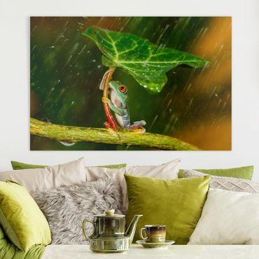 Stampa su tela - Rana In The Rain - Orizzontale 3:2