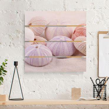 Stampa su legno - Urchin In Pastel - Quadrato 1:1