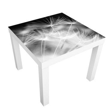 Tavolino design Moving dandelions close up on black background