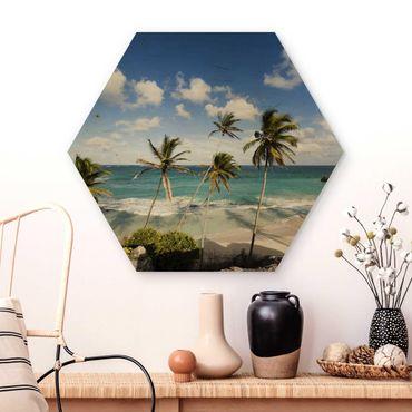 Esagono in legno - Spiaggia Di Barbados