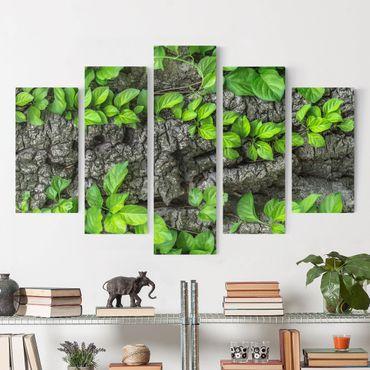 Stampa su tela 5 parti - Ivy tree bark