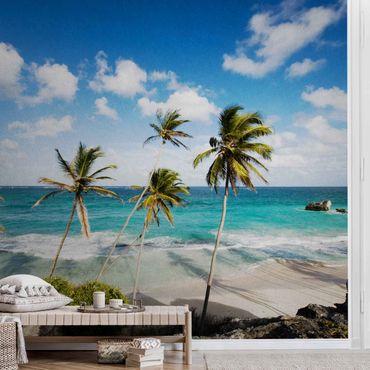 Carta da parati metallizzata - Beach of Barbados