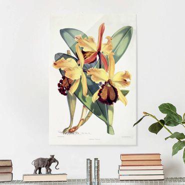 Quadro in vetro - Maxim Gauci - Orchid III - Verticale 3:2