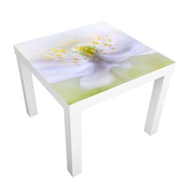 Tavolino design Anemones Beauty