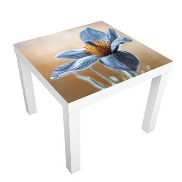 Tavolino design Kuhschelle In Blue
