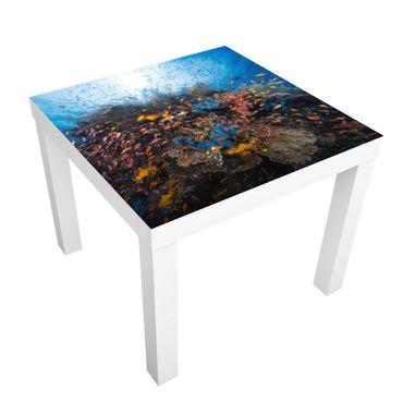 Tavolino design Lagoon With Fish
