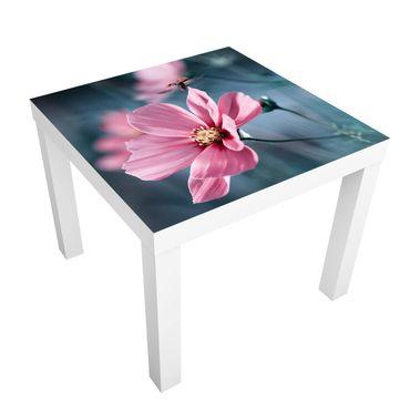 Tavolino design Ladybug On Startup