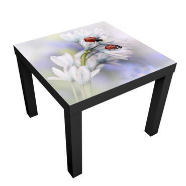 Tavolino design Ladybugs Couple