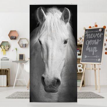 Tenda a pannello Dream of a Horse 250x120cm