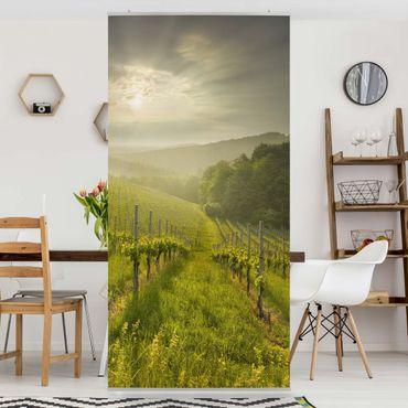 Tenda a pannello - Sunbeams Vineyard 250x120cm
