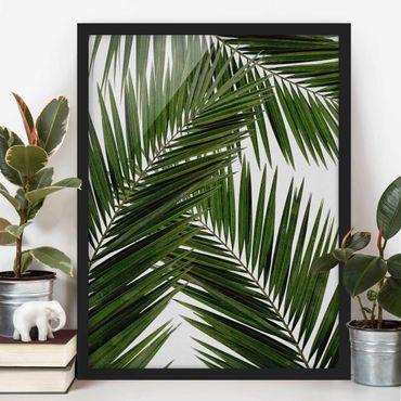 Poster con cornice - Scorcio tra foglie di palme verdi