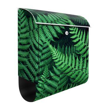 Cassetta postale - Fern 39x46x13cm