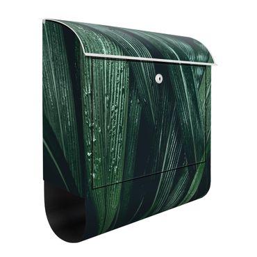 Cassetta postale - Green Palm Leaves 39x46x13cm