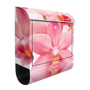 Cassetta postale Pink orchids on water 39x46x13cm