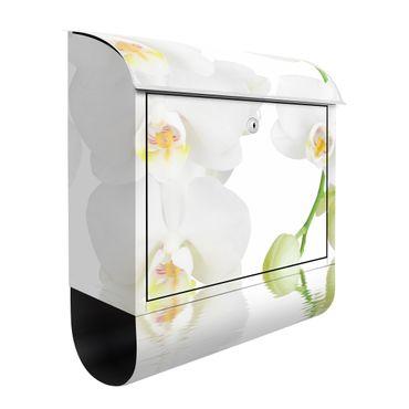 Cassetta postale Wellness orchid 39x46x13cm