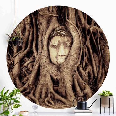 Carta da parati rotonda autoadesiva - Buddha in Ayutthaya dalle radici degli alberi allineati in marrone