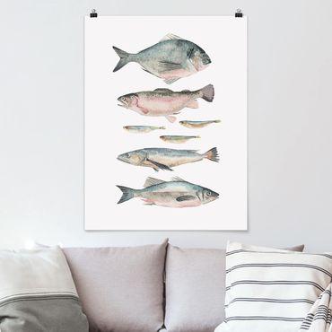 Poster - Sette pesce in acqua di colore II - Verticale 4:3