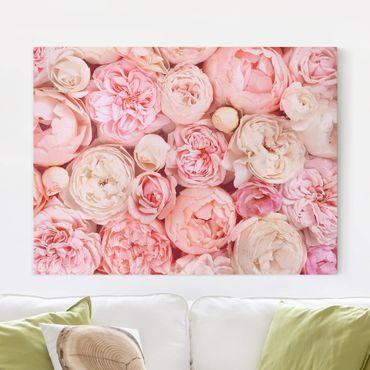 Quadri su tela - Rosa Rosa Corallo Shabby