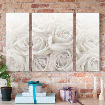 Stampa su tela 3 parti - White Roses - Trittico