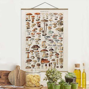 Foto su tessuto da parete con bastone - Funghi del Consiglio d'epoca - Verticale 4:3