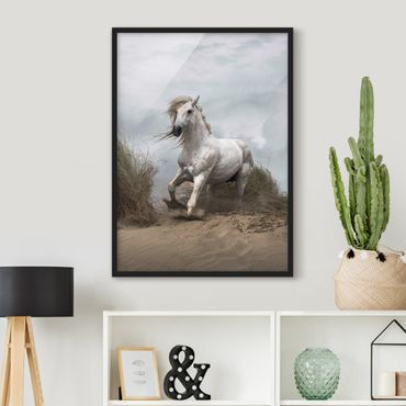 Poster con cornice - White Horse In The Dunes - Verticale 4:3