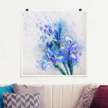Poster - Acquerello fiori dell'iride - Quadrato 1:1