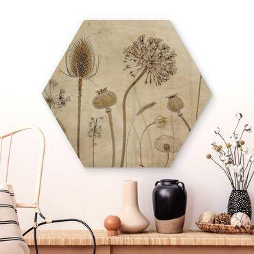 Esagono in legno - Growing Old