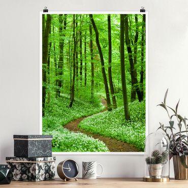 Poster - Romantico pista forestale - Verticale 4:3