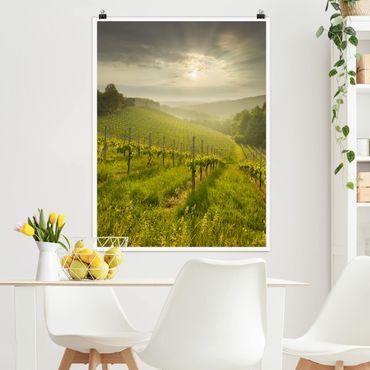 Poster - Sunrays Vineyard - Verticale 4:3