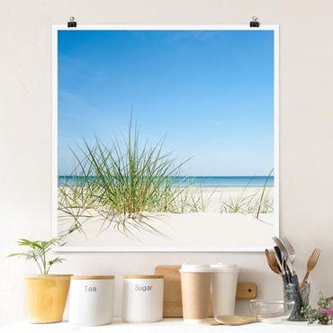 Poster - Costa del Mar Baltico - Quadrato 1:1