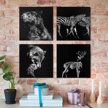 Stampa su tela - Animali selvatici provenienti da Nero Set I - 4 parti