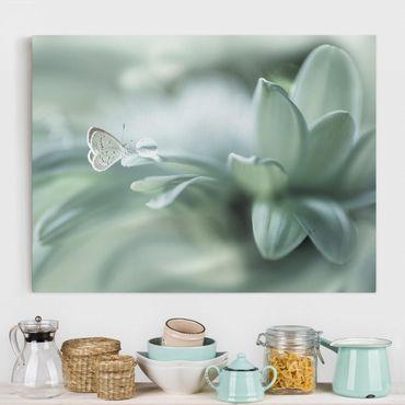 Stampa su tela - Farfalla E Gocce di rugiada In Pastel Verde - Orizzontale 4:3