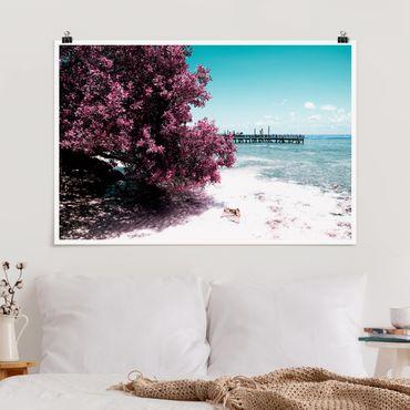 Poster - Paradise Beach Isla Mujeres - Orizzontale 2:3