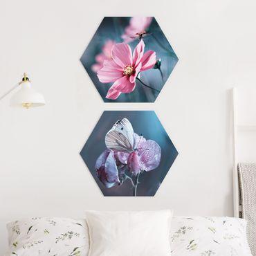 Esagono in Alluminio Dibond - Farfalla e coccinella On Flowers