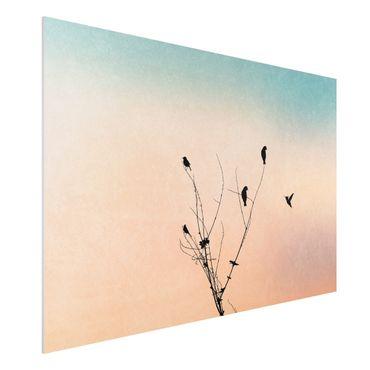 Stampa su Forex - Uccelli davanti al sole rosa II - Orizzontale 2:3