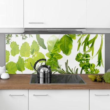 Paraschizzi in vetro - Various Herbs - Panoramico