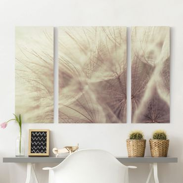Stampa su tela 3 parti - Detailed And Dandelion Macro Shot With Vintage Blur Effect - Trittico