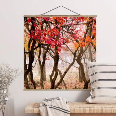 Foto su tessuto da parete con bastone - Giappone In autunno - Quadrato 1:1