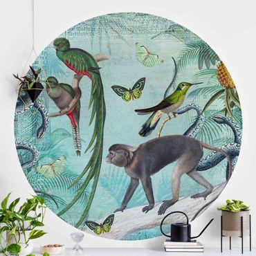 Carta da parati rotonda autoadesiva - Coloniale Collage - scimmie e uccelli del paradiso