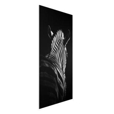 Quadro in forex - Scuro silhouette zebra - Verticale 1:2