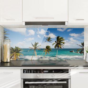 Paraschizzi in vetro - Beach Of Barbados - Panoramico