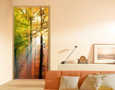 """Carta da parati per porte no.54 """"FOREST LIGHTS"""" 100x210cm"""